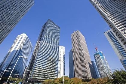 秋の新宿高層ビル群