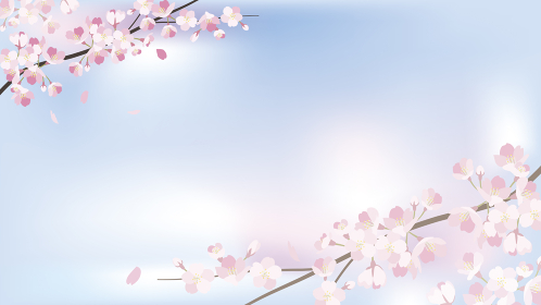 background_sakura 2_3