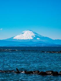 早春の相模湾と冠雪した富士山 2月 葉山町