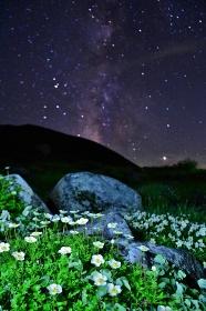 立山連峰 満天の星空とチングルマ