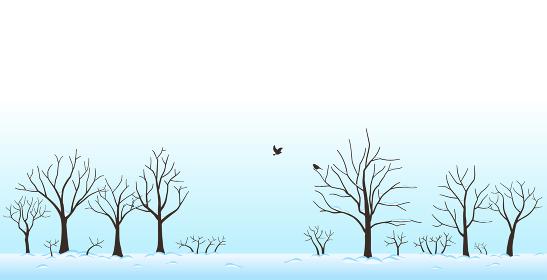 雪の積もった木々と鳥 風景 冬の景色