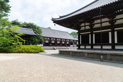 唐招提寺 (奈良県奈良市 2019/06/20撮影)