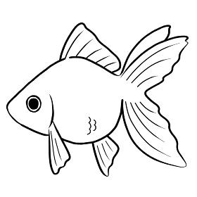 金魚 アイコン