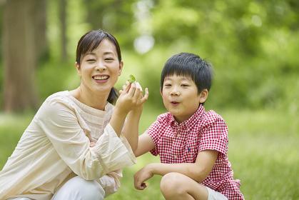 葉っぱを観察する母親と息子