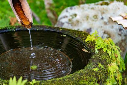 """日本の庭園にある静かに水が流れ落ちる手を洗うための石の器""""手水鉢"""""""