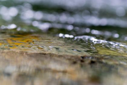 水面すれすれから見た川