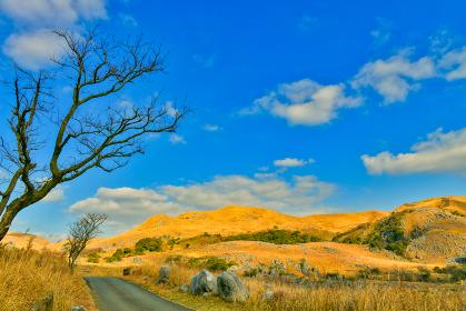 爽やかな冬の青空の平尾台