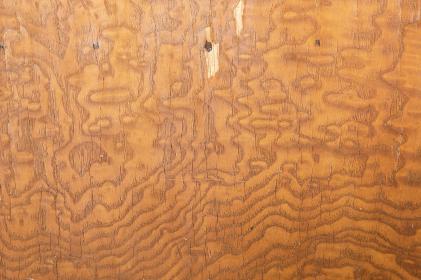 ひび割れた木目の背景素材