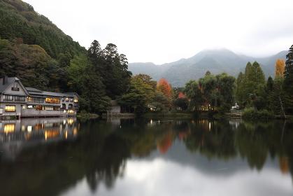 湯布院金鱗湖畔のある秋の日の静かな朝