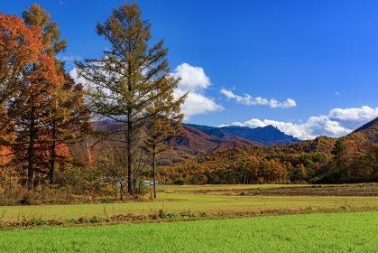 長野県・川上村 秋の農村の風景