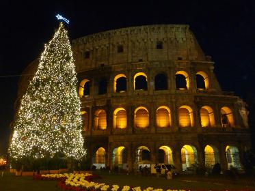 イタリア・ローマにてコロッセオのライトアップとクリスマスツリーのイルミネーション