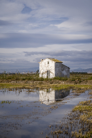 Reflection of a House in the rice fields in spain