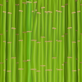 Colorful Stems and Bamboo Leaves Background. Vector Illustration. EPS10. 2015-07-15-07 [??N€?µ???±N€?°?·?????°????N‹??]