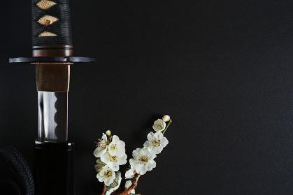 黒い背景に少し抜いた日本刀と白い花が咲いた梅の枝