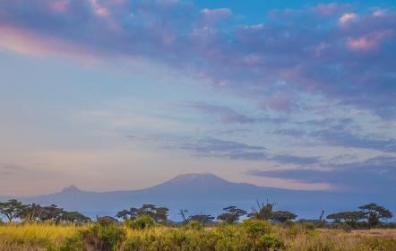 アフリカの景色 キリマンジャロ