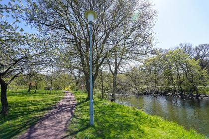 緑いっぱいの公園