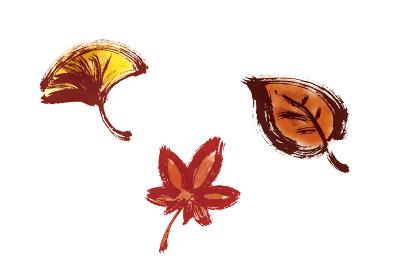 秋の葉っぱ集合 手描き筆描きセット