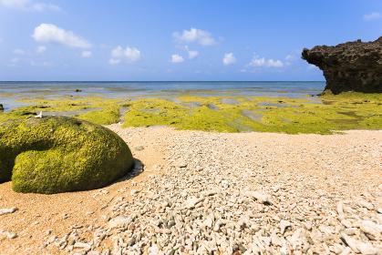 日本最南端、沖縄県波照間島・浜辺の風景