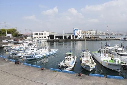 グルメ旅・田子の浦漁港 新鮮魚料理・GOTOトラベル GOTOイート