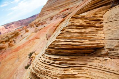 アメリカ・アリゾナ州にてバーミリオンクリフス自然保護区ザ・ウェーブの地層クローズアップ