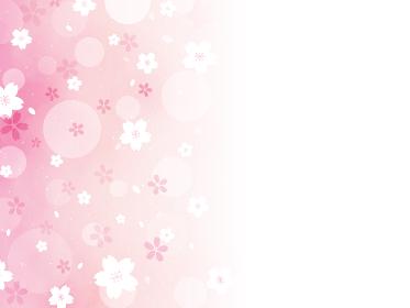 桜 サクラ 背景 カード 横型