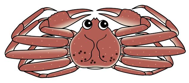 オスの蟹 crab キャラクター イラスト