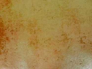 テラコッタの表面