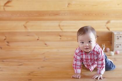 木の床でハイハイする赤ちゃん