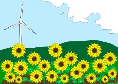 ひまわり畑と自然の力を利用した風力発電