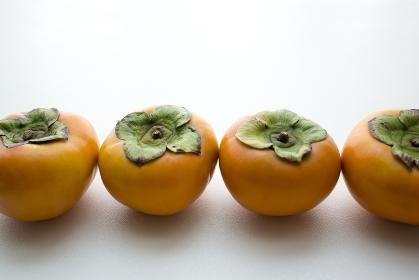 一列に並べられた柿