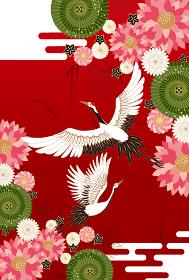 和柄:鶴 丹頂鶴 鳥 和風 和柄 和風 花 お正月 新年 成人式 卒業式 結婚 祝 振袖 着物 タ