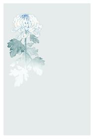 菊 花 喪中はがき フレーム 水彩 イラスト