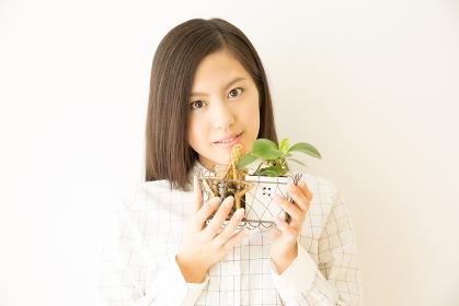 観葉植物と女性