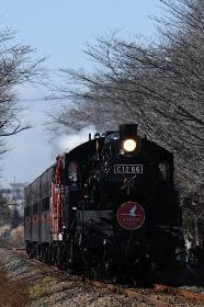 真岡鉄道100年記念号