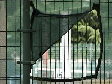 テニスコートのネットの覗き穴