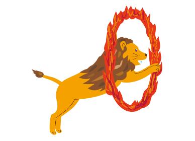 燃える輪をくぐるサーカスのライオン