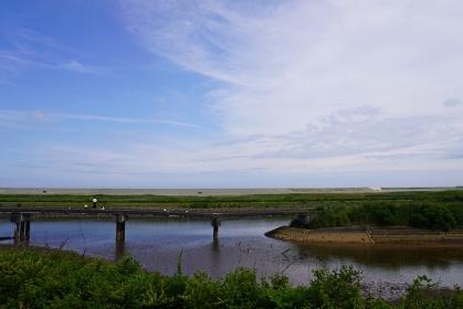 復興工事の堤防により、海が見えなくなった貞山堀(宮城県仙台市)