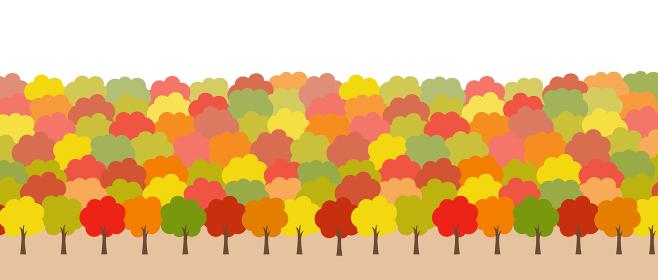 秋の紅葉 風景