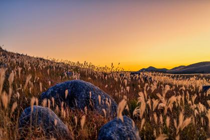夕暮れの美しい空とカルスト台地のススキ(福岡県)