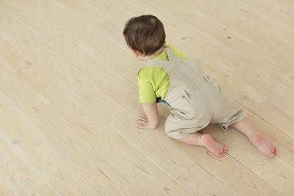 リビングをハイハイする赤ちゃん