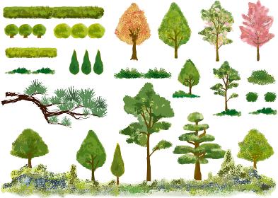 植木:植栽 緑 自然 木 庭園 庭 ガーデニング 挿絵 ベクター 日本庭園 樹木 挿絵