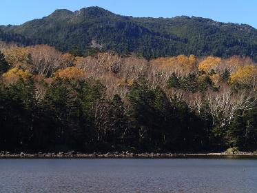 赤城山・覚満渕の秋
