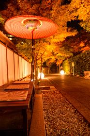 秋の小倉城庭園夜景