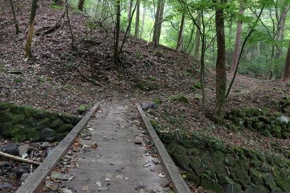 登山道にある木製の橋