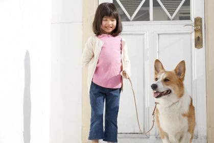散歩に出かけるウェルシュ・コーギー・ペンブロークと女の子