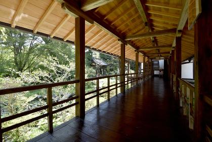 十輪寺 回廊と庭 京都市
