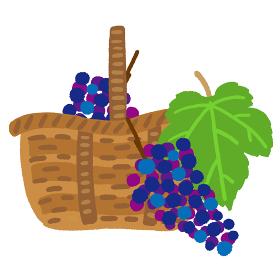 取手のついたカゴに入った赤葡萄と葡萄の葉っ