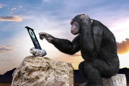 知能の高いチンパンジーが岩に座り電子パネルの操作を頭を抱えながら操作する