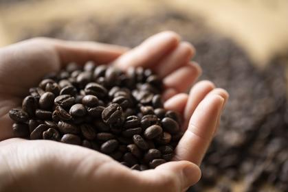 コーヒー豆を山盛りに持つ若い女性の手元