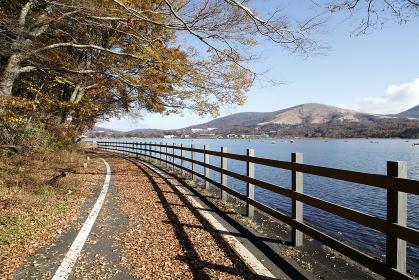 サイクリングロード(山中湖)